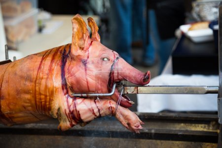 Closeup to a pig on a spit at a festival...