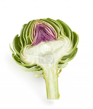 Cross-section of a fresh artichoke