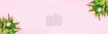 Photo for Tulips on a pink background. Easter and spring concept. Top view banner with copy space flat lay greeting card. - Royalty Free Image