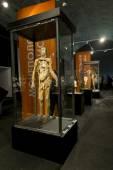 Anato exponáty na výstavě lidské tělo v St. Pe