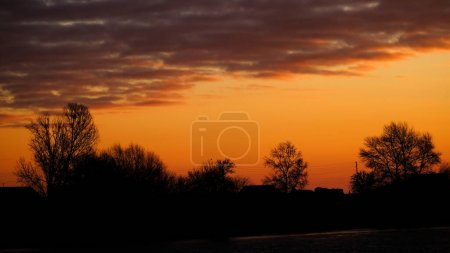 Photo for Silhouettes of houses and trees at sunset - Royalty Free Image