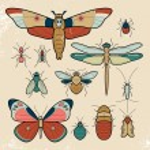 Постер, плакат: Set of insect