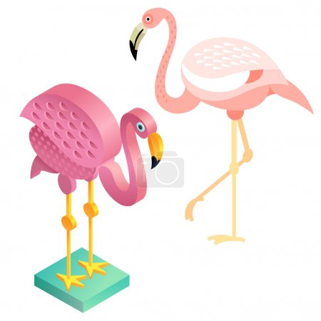Bird flamingos in a flat style and an isometric view.