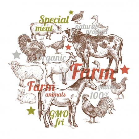Composition in the circle with farm animals and birds.