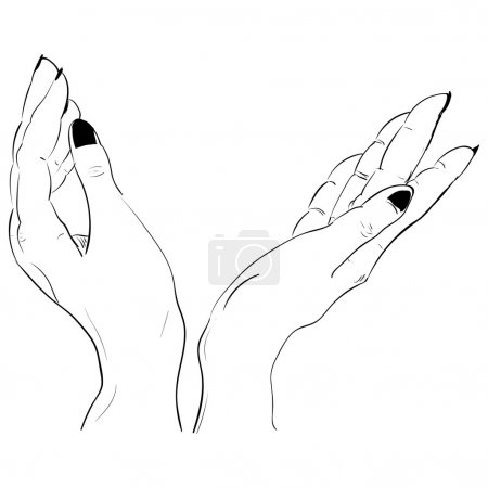 Beautiful female two pair open hands. vector