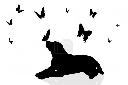 Dog surrounded by butterflies.