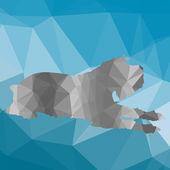 Poly nízká silueta psa
