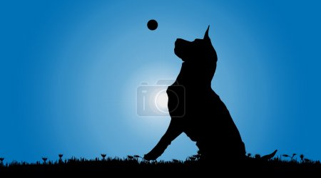 black silhouette of a dog.