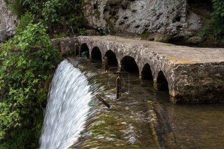Image of flowing down water and algae