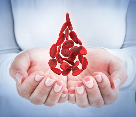 Blood cells in hands - shaped blood drop - donation concept
