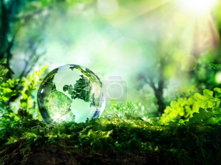 Photo for Crystal globe on moss in a forest - environment concept - Royalty Free Image