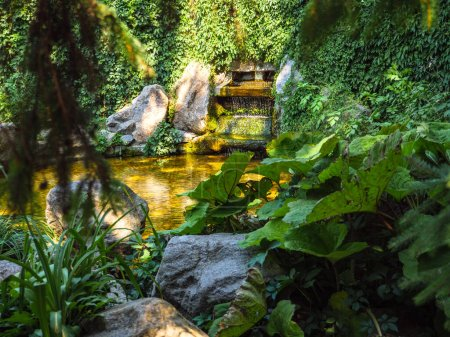 Photo for View through foliage over the waterfall fountain amidst crawling greenery with water flowing into round-shaped pond. Intimate cosy atmosphere in Alexandria Park, Bila Tserkva. - Royalty Free Image