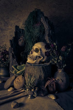 Still life with a human skull with desert plants, cactus, roses