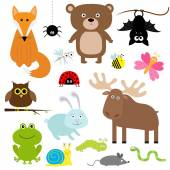 Forest animals and insects set