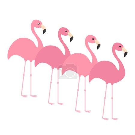 Four pink flamingos