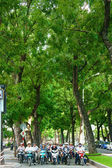 Asijské město, velký strom, vietnamské ulici