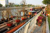 Loď, jarní květiny, Vietnam Tet