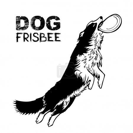 Dog frisbee sports