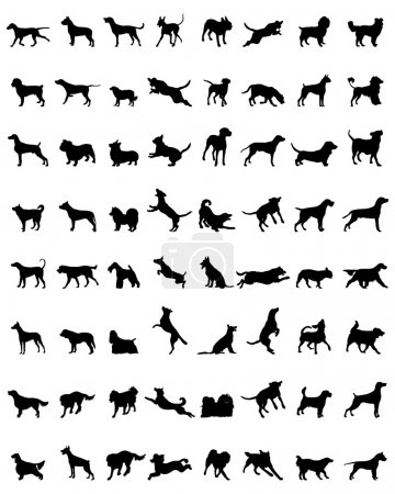 Illustration for Different black silhouettes of dogs, vector - Royalty Free Image