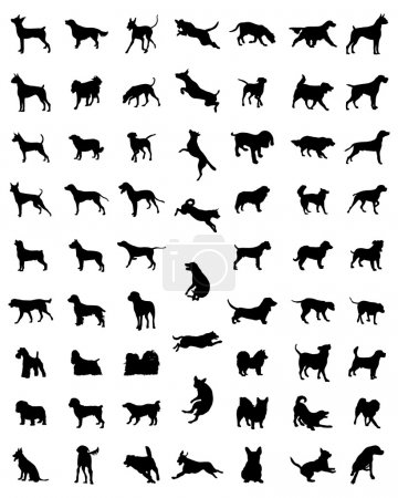 Illustration for Black silhouettes of different races of dogs, vector - Royalty Free Image