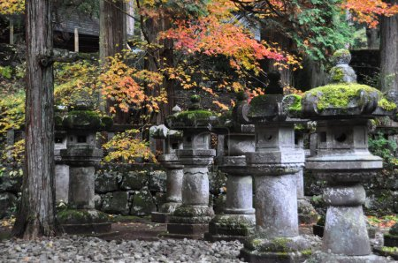 Stone lanterns at Toshogu Shrine, Nikko
