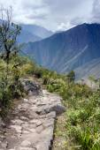 Inca trail passing through the ruins of Machu Picchu