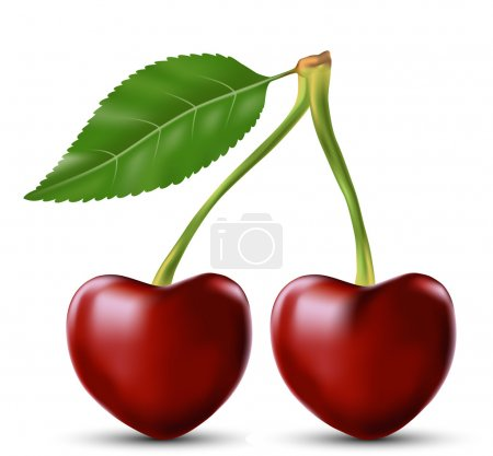 Two lovers cherry as the heart symbol of love