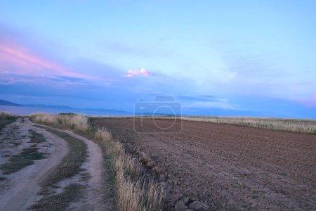 Paysage rural et route de campagne au beau coucher de soleil apaisant