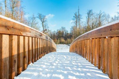 Snow on wooden bridge in forest