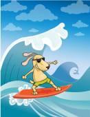 Surfování pes