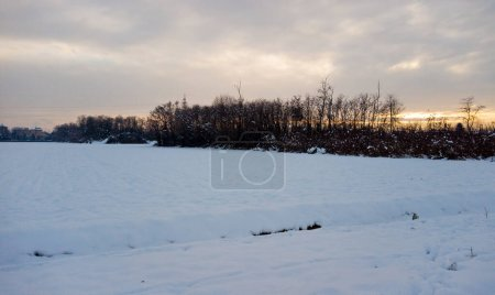 Photo for Snow on a country in winter time with the fog - Royalty Free Image