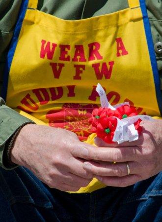 Photo pour Un travailleur cales rouges - coquelicots copain dans ses mains. la fleur officielle de memorial, le coquelicot représente le sang versé par les militaires américains. Il réitère que vfw n'oublieront pas leurs sacrifices. - image libre de droit