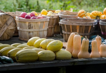 Photo for Fresh fall produce for sale at an Indiana farm stand - Royalty Free Image