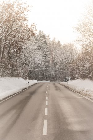 Sunny winter road with wonderful white snow covered forest trees