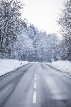 Cold winter road with wonderful white snow covered forest trees