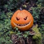 The orange selfmade halloween symbol is sitting be...