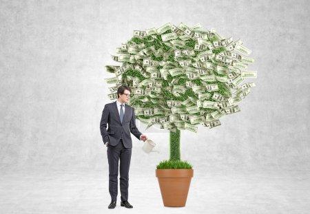 Empresario de riego olla con árbol de dinero. Fondo de hormigón. Concepto de beneficio .