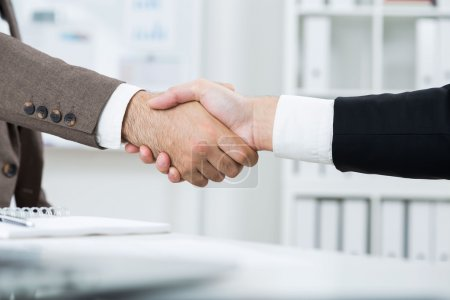 Businesspeople shaking hands on blurry office background. Closeup