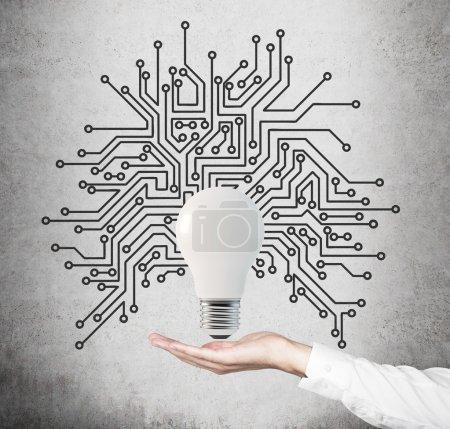 lightbulb with microcircuit