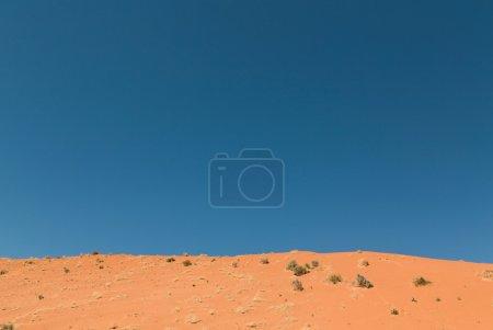 Photo pour Désert du Nevada avec ciel sur fond - image libre de droit