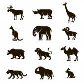 12 black vector icons of wild animals on a white background