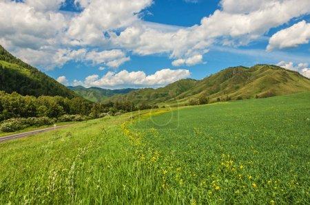 Berge, Felder, Wiesen, Himmel, Hintergrund