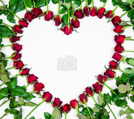 Valentines Day Heart Made of Red Roses Isolated on White Backgro