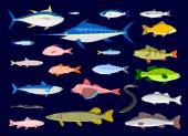 Edible Fishes