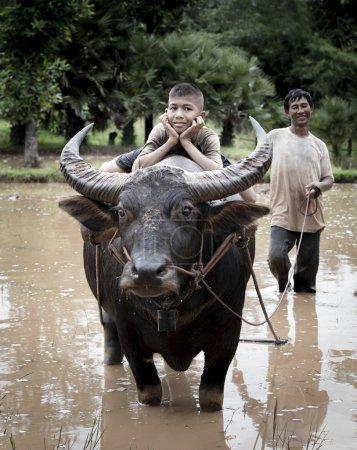 Happy boy riding water buffalo.