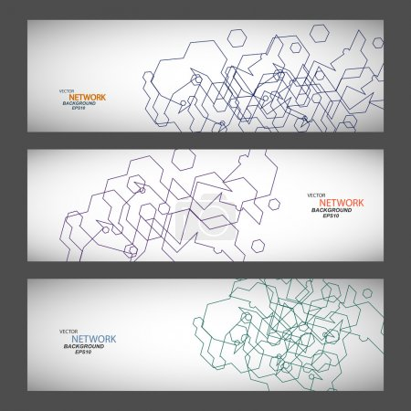 Vector set three sets of abstract contour lines