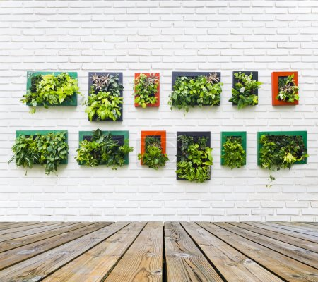 Photo for Vertical garden on white brick wall texture background - Royalty Free Image