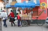 Family Walks By Bicycle Food Cart