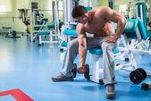 Silový trénink profesionální sportovec v tělocvičně