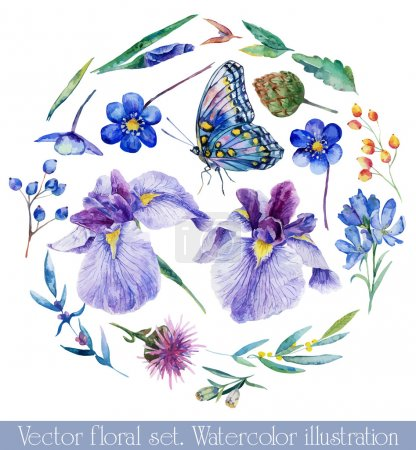 Illustration for Watercolor irises, cornflower, wildflowers, leaves, berry, butterfly. Set of floral elements to create compositions. - Royalty Free Image